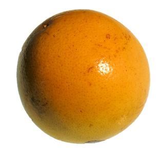 Grapefruit Star Ruby gelegt