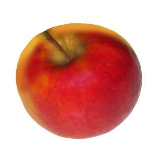 Apfel Neue Ernte