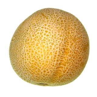 Honigmelone Piel de Sapo