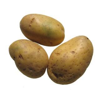 Kartoffeln Neue Ernte