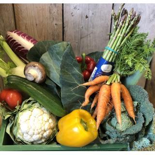 Grüne Kiste Gemüse M